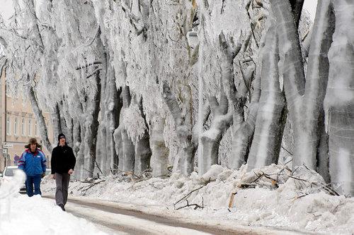 スロベニアの大寒波 014