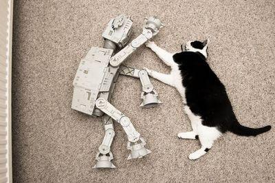 猫スターウォーズ01