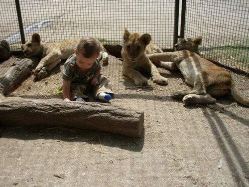 ルハン動物園18
