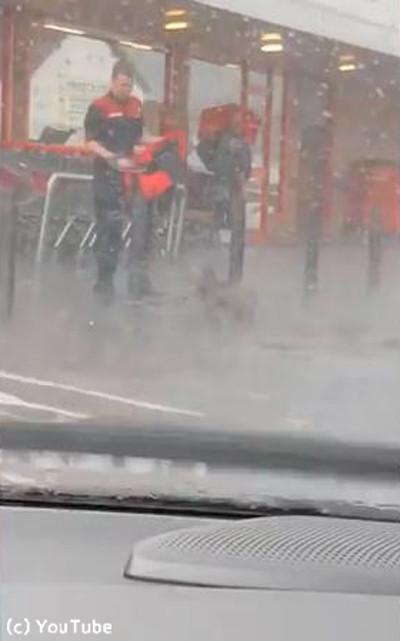 大雨の中繋がれたままの犬01