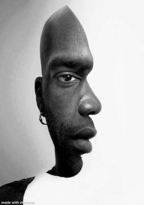 正面顔にも横顔にも見える01