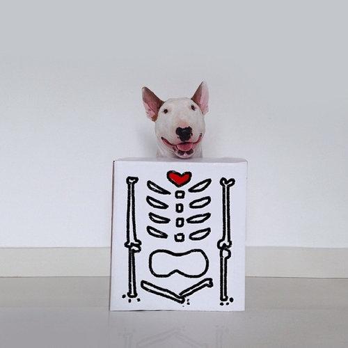 愛犬と10倍楽しむ方法03