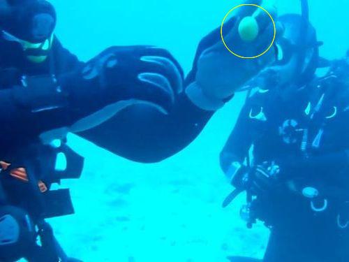 水深32mで生卵を割ると