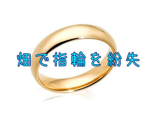 畑で紛失した指輪00