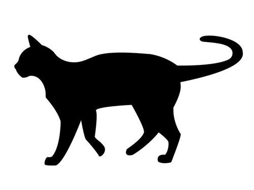 黒猫を飼うなら気を付けなきゃいけないこと00