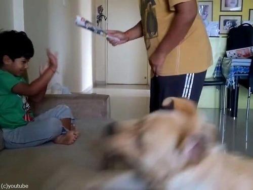 犬が男の子を父から救おうとする02