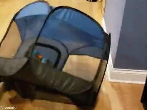 犬用テントの想定外の遊び方01