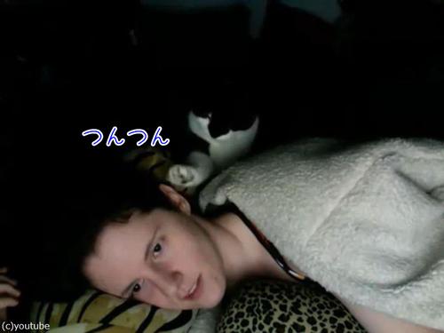 寝ていると、顔をチョンチョンしてくる猫00