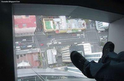 ガラス張りの高層ビルの下14