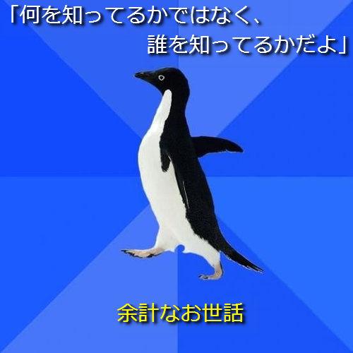 社交性のないペンギン12●「何を知ってるかではなく、誰を知ってるかだよ」 ─ 余計なお世話