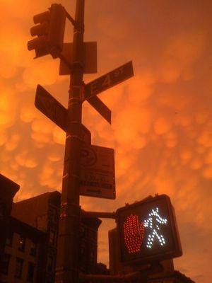 ニューヨークの空を埋め尽くした乳房雲10