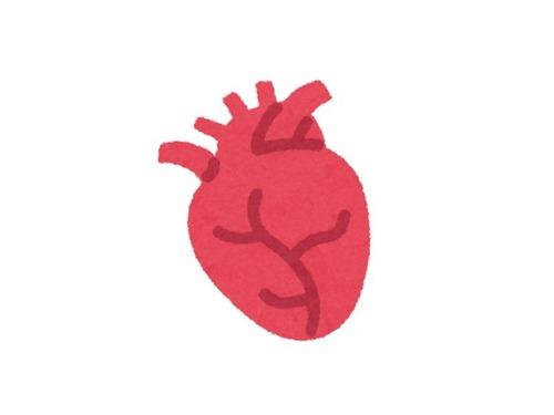友人ジョンの新しい心臓00