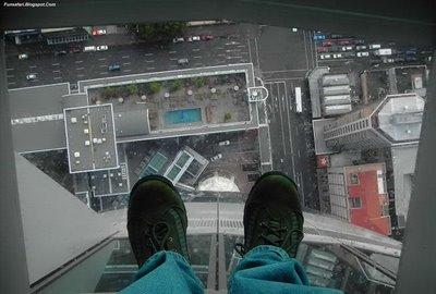 ガラス張りの高層ビルの下16