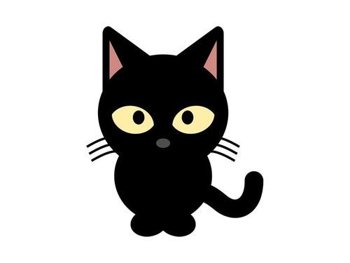 ルームメイトが出て行った後の猫00