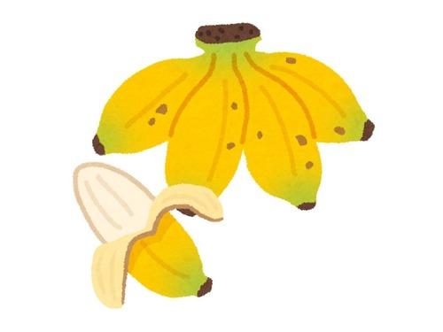 バナナが完璧すぎると偽物くさくなる00