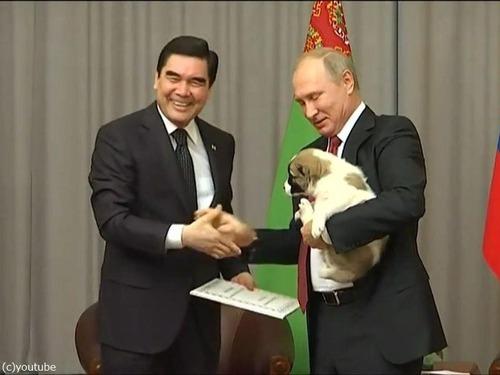 プーチンでさえ犬の正しい抱き方は知っている05