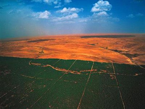 アフリカの森林版、万里の長城02