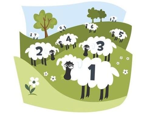 羊を数えても眠れないとき00