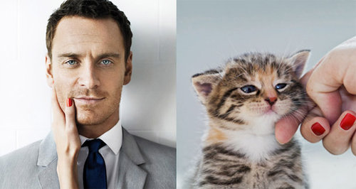 猫が人間の男よりも魅力的な理由01