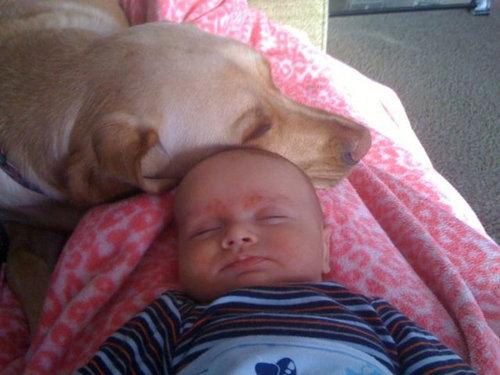 息子と愛犬の友情03