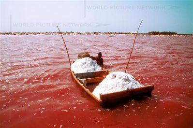 セネガルのレトバ湖04