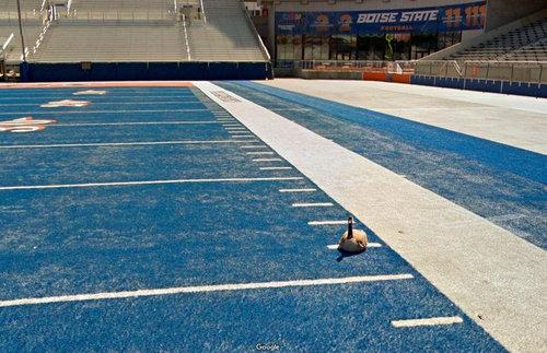 スタジアムのピッチの色が青いとき01