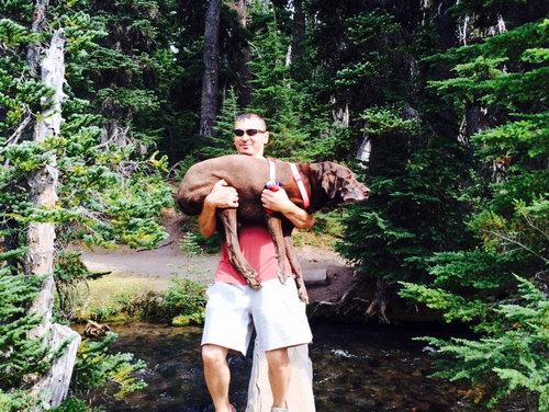 うちの犬は腰が悪いのにハイキングが大好き06