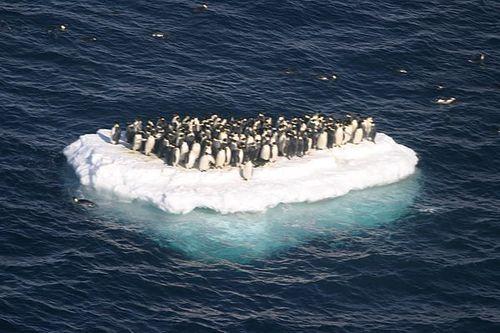 じわじわくる南極の写真01