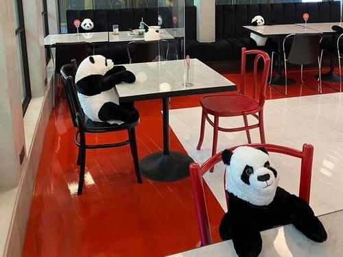 ベトナムのレストランがパンダのぬいぐるみ01