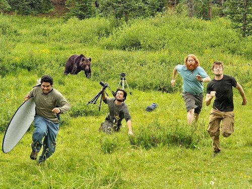 野生の動物写真の撮影01