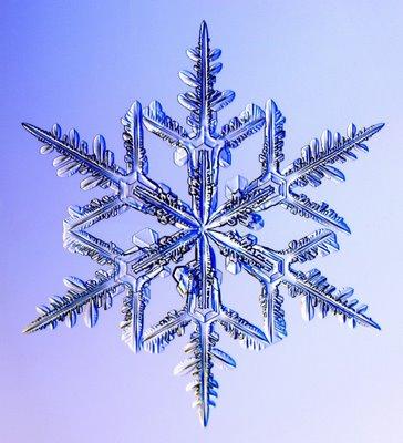 雪の結晶09