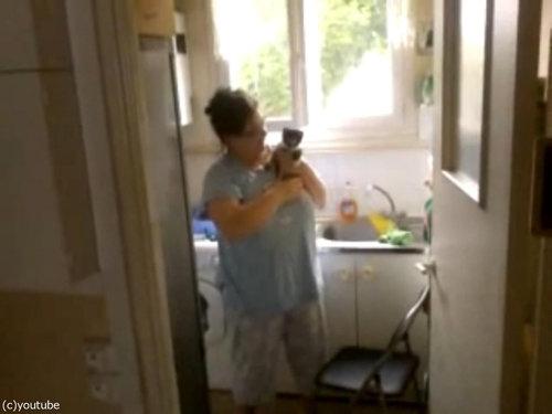 洗い物と子猫06