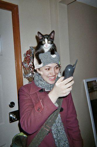 猫を頭乗せ08