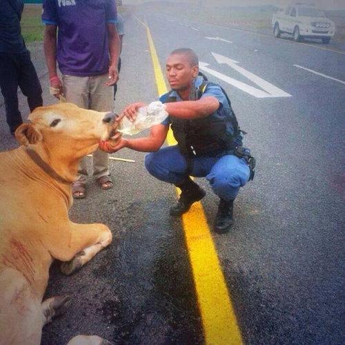 親しみが持てる警察官12