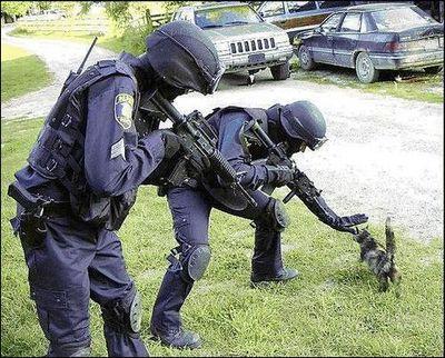 警察だって必死なんです05