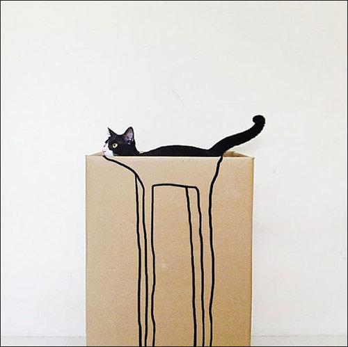 楽しい猫たち04