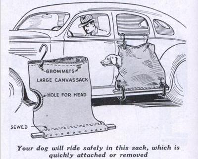 こんな発明じゃ、犬がかわいそうだろ