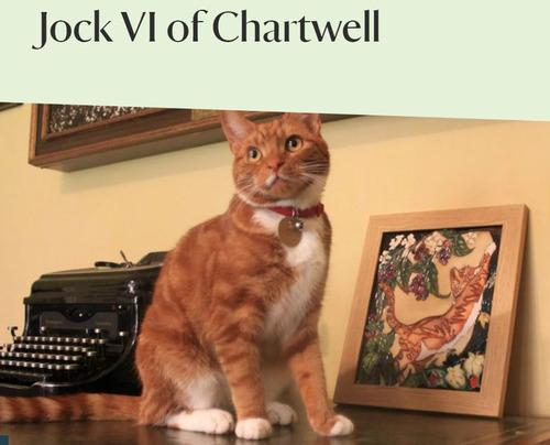 チャーチル首相と猫02