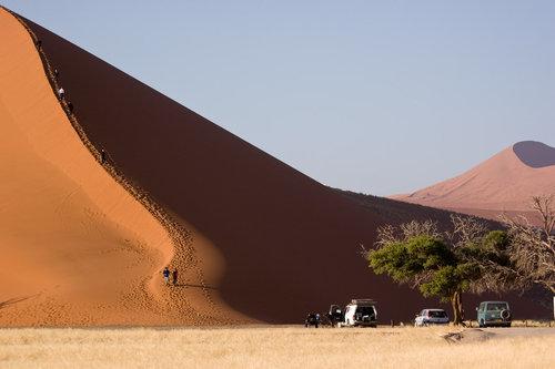 ナミブ砂漠のDune4503