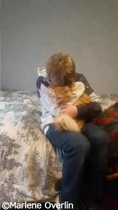 少年と迷子猫の感動の再会03