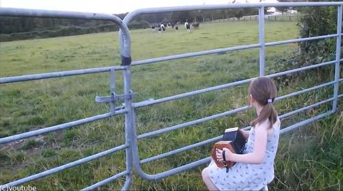 少女が演奏してたら可愛い観客が02
