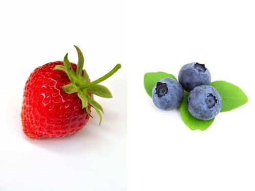 イチゴやブルーベリーの成長過程00