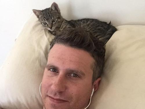 帰宅したら見知らぬ猫がいた04