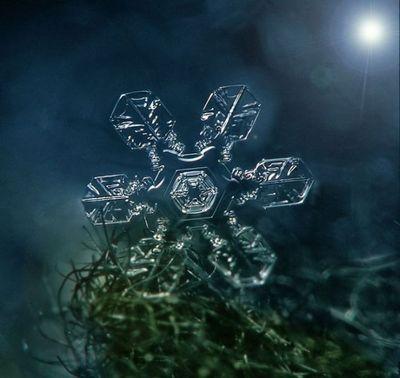 雪の結晶07