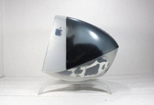 iMacと猫11