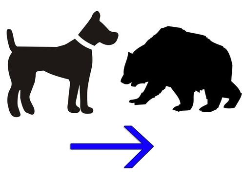 犬をクマにする方法00