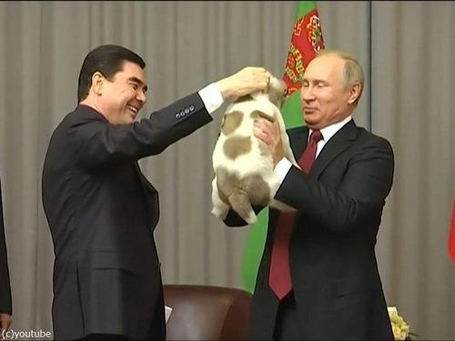 プーチンでさえ犬の正しい抱き方は知っている04