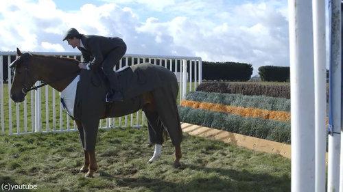 イギリスでは馬も紳士10