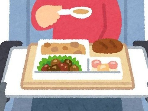 日本の航空会社のエコノミークラスの食事に感動するアメリカ人00