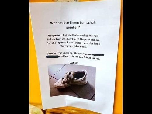 靴泥棒のキツネ00